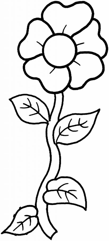 Flower Coloring – 1